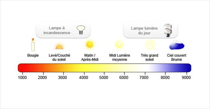 Choisir ses quipements d clairage led lampes basses for Consommation electrique d une maison